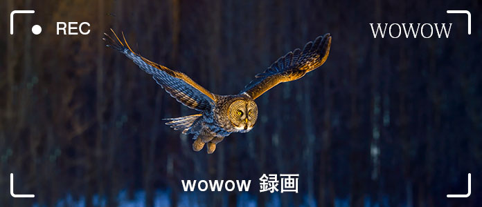 WOWOW番組を録画